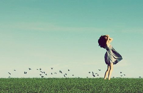 Sự đời trong gió