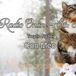 Radio Online Số 06 – Con Mèo