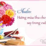 [20/11] Audio: Hương mùa thu cho niềm vui say cùng cuộc đời này