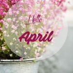 Nắng ấm tháng tư
