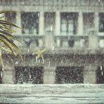 Ký ức về mưa