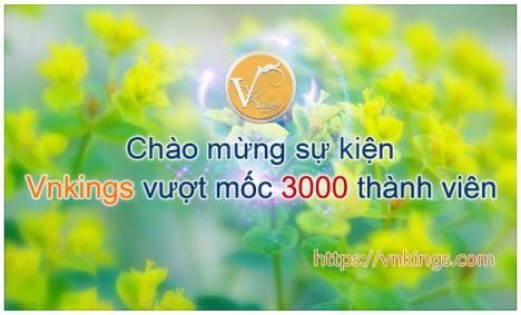 Event: Chào mừng sự kiện Vnkings vượt mốc 3000 thành viên