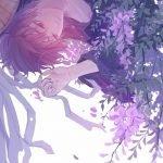 Đợi em dưới bóng hoa Tử Đằng