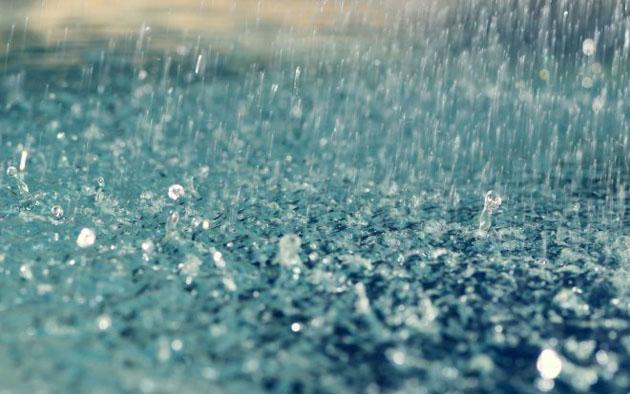Cơn mưa duyên số