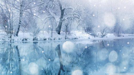 Tản mạn mùa đông