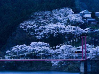 Nhật Bản – Chuyến đi đáng nhớ.
