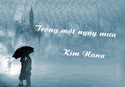 Trong một ngày mưa