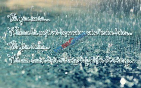 Xin Lỗi, Bởi Vì Đây Là Yêu…
