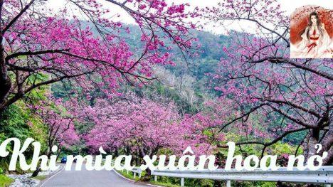 Khi mùa xuân hoa nở (SE)