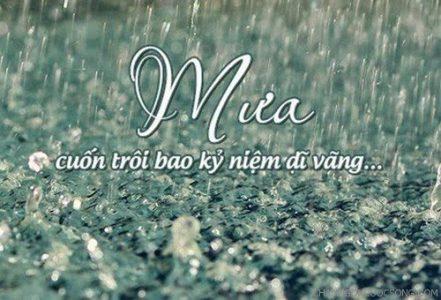 Cơn mưa cuối hạ