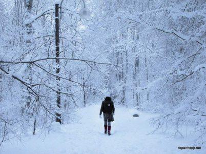 Sự lạnh giá của mùa đông