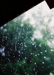 Nhật kí ngày mưa dành cho thần tượng của tôi – forever rain