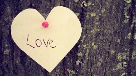 Với cô tình yêu là…