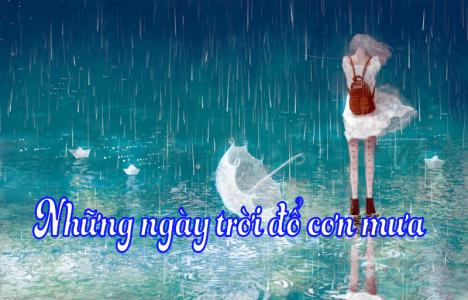 Những ngày trời đổ cơn mưa