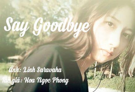 Say Goodbye (Nói Tạm Biệt)