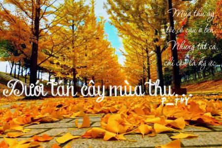 Dưới tán cây mùa thu