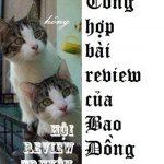 Tổng hợp bài review của Bao Đồng – Hội review truyện.