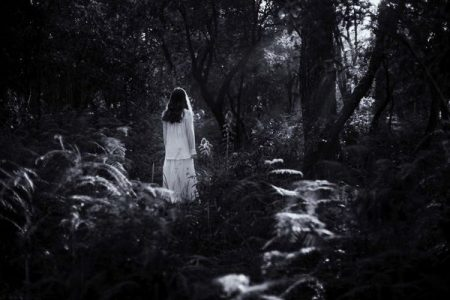Kỷ mộng luân hồi (Phần 1)
