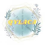 Nhận thiết kế Logo theo yêu cầu – Qylaca