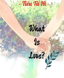 What is love? (Tình yêu là gì?)